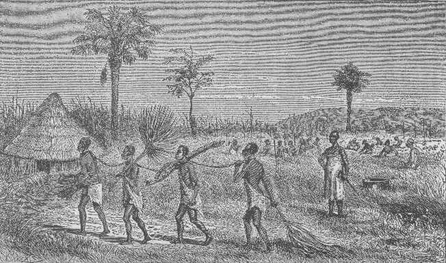 ST-slaves